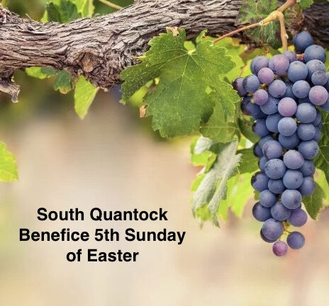 5th Sunday of Easter Reflection